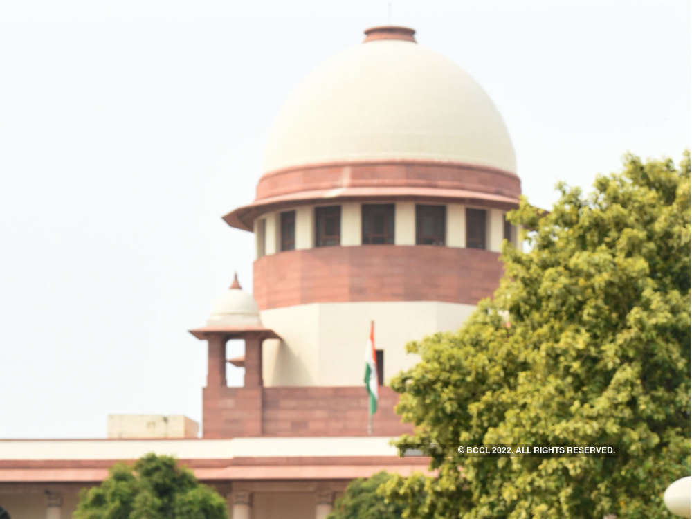 Ayodhya case: SC deplores BJP minister's 'SC is ours' remark