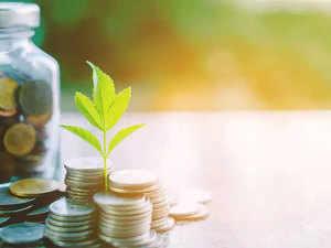 raise-fund,-money-grows-Thi