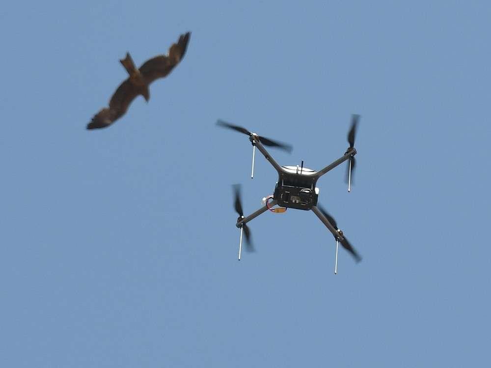 Drones cause diversion of flights at Dubai Airport