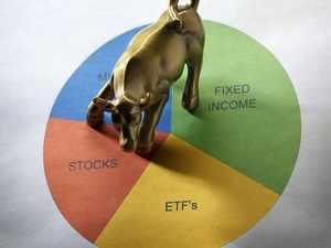 mutual fund bull