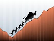 Bull-market-2---Shutter