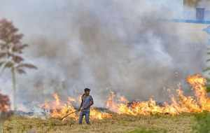 Hisar: A farmer burns paddy stubbles in a field in a village in Hisar district o...