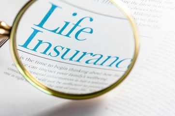 How and where to check death claim settlement ratio of life insurers