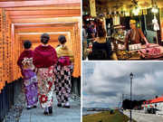 Winter season treats: Discover the culinary & cultural delights in Japan, Falkland Islands