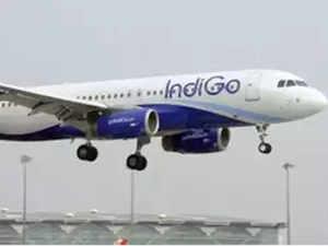 indigo-in-flight-indi
