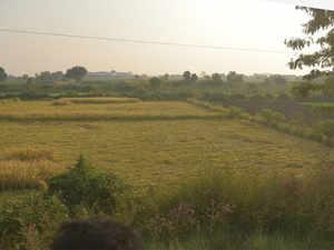 farm-land-bccl