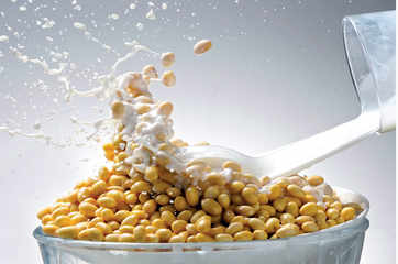 How India, overcoming its prejudice for soy, now offers the world a model for sustainable use of the bean