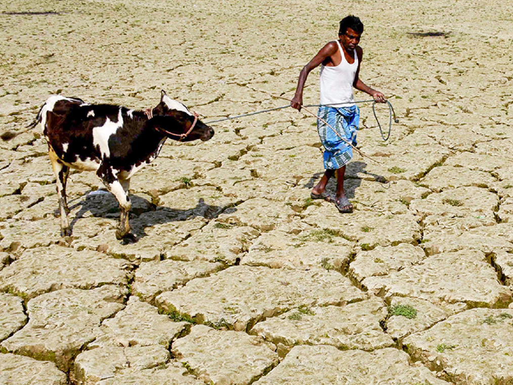 A 1°C shift in faraway Indo-Pacific waters can push agriculture into a chaos. India needs to worry.