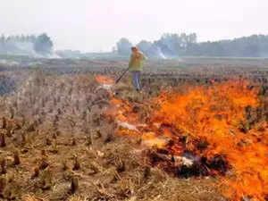 stubble-burning-agencies
