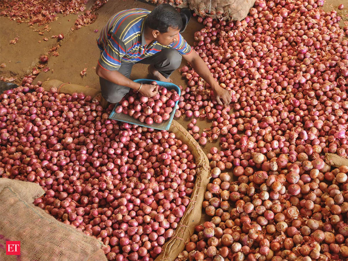 Onion Prices From Afghanistan