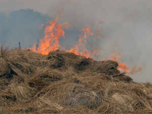 stubble-burning-BCCL