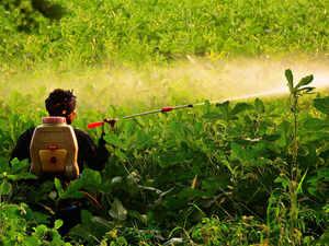 pesticide bccl