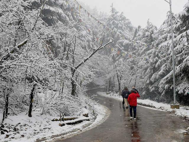 Shimla sees season's heaviest snowfall - Season's heaviest snowfall | The Economic Times