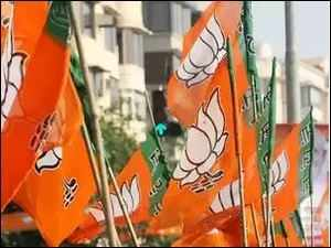 Delhi Assembly Polls: BJP released its 2nd and  final list of candidates