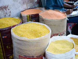 pulses-BCCL