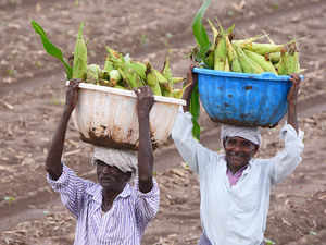 Aviation Ministry to launch Krishi Udan scheme for transport of agri-products: FM