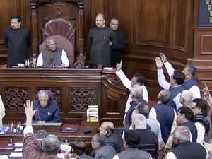 parliament ani