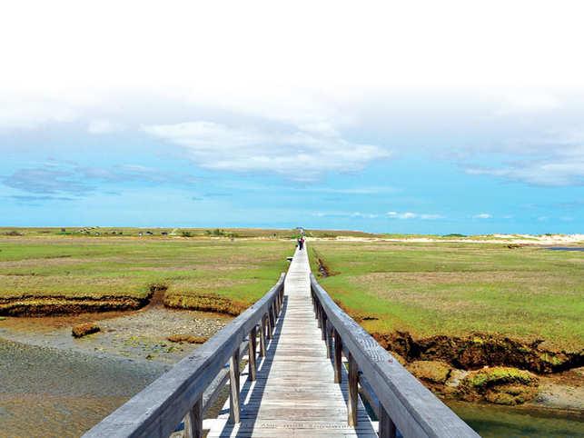 Boardwalk in Sandwich,Cape Cod