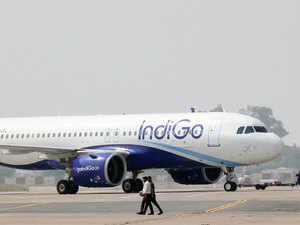 Indigo---BCCL