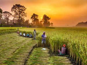 farmers-scheme-istock