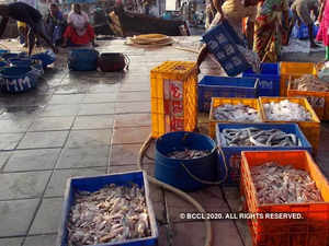 seafood-exports