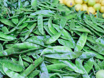 Agri Commodities: Guar seed, mustard seed, guar gum futures decline on muted demand