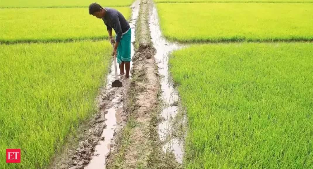 Centre appeals West Bengal govt to join PM-Kisan scheme