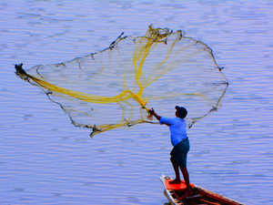 fisherman-bccl