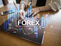 Forex news next week