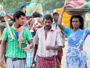 Migrant labour_cbcl