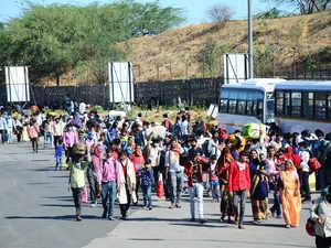 migrants ahmedabad bccl