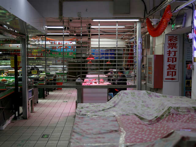 Shenzhen becomes first Chinese city to ban sale, consumption of dog and cat meat