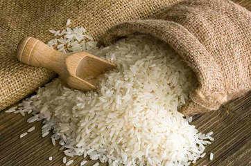 Punjab tops in transporting food grains during lock down