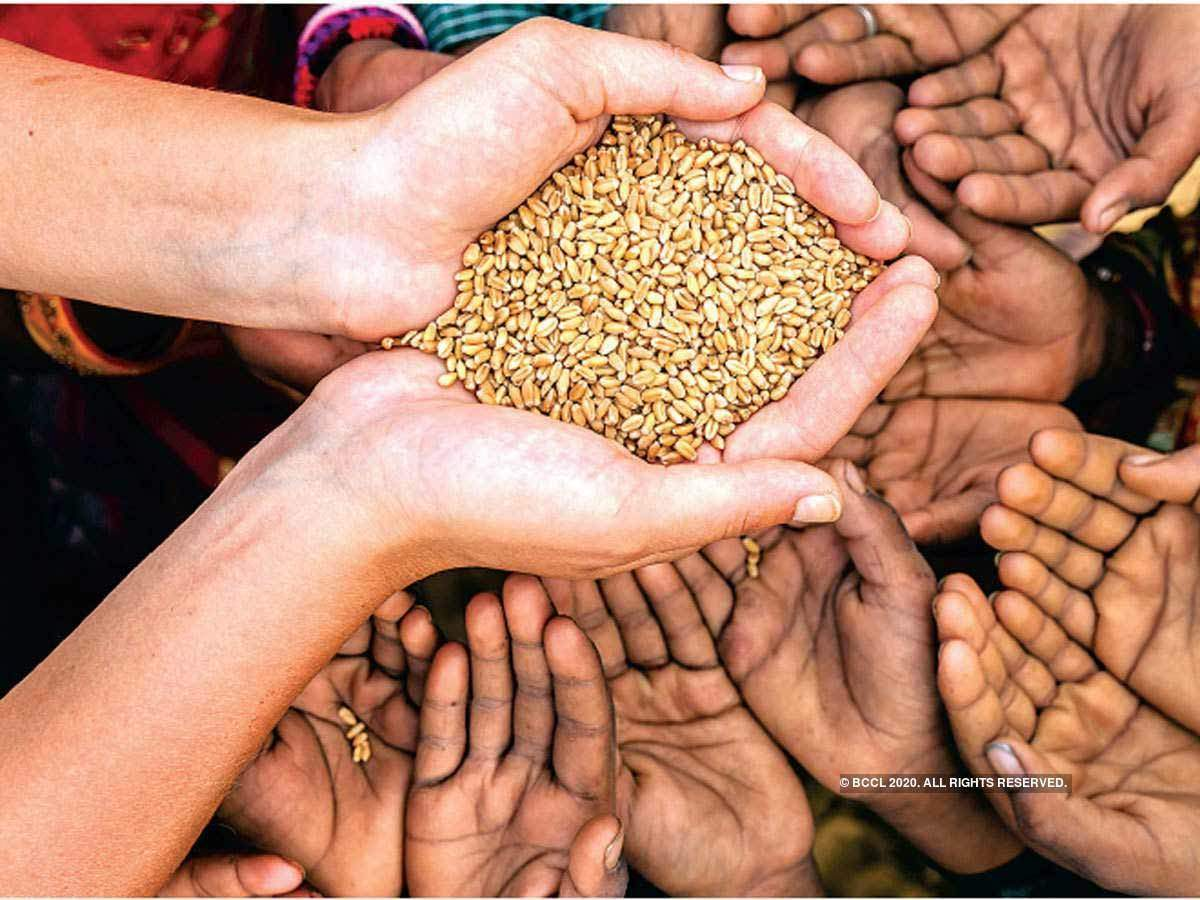 International Food Policy Research Institute: Latest News & Videos, Photos  about International Food Policy Research Institute | The Economic Times