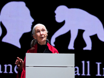 Unlimited economic development in a world of finite natural resources spells disaster: Jane Goodall