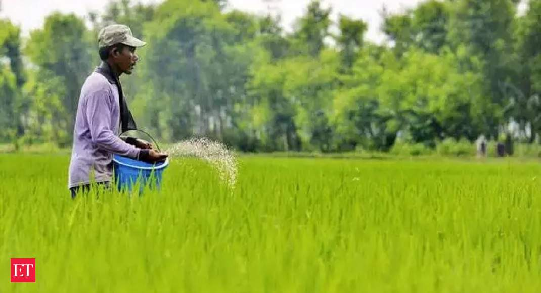 Govt cuts subsidy for non-urea fertilisers, to cost Rs 22,186.55 crore for FY21
