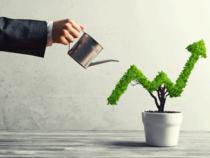 Tanla Solutions Share Price Share Buyback Approval Lifts Tanla Solutions Stock By 5 The Economic Times