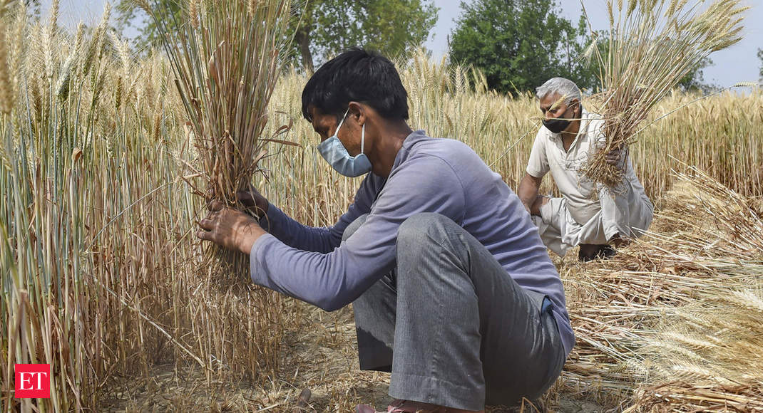 View: A lot done, now take MGNREGS to small and marginal farmer