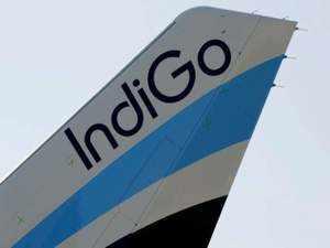 indigo agencies