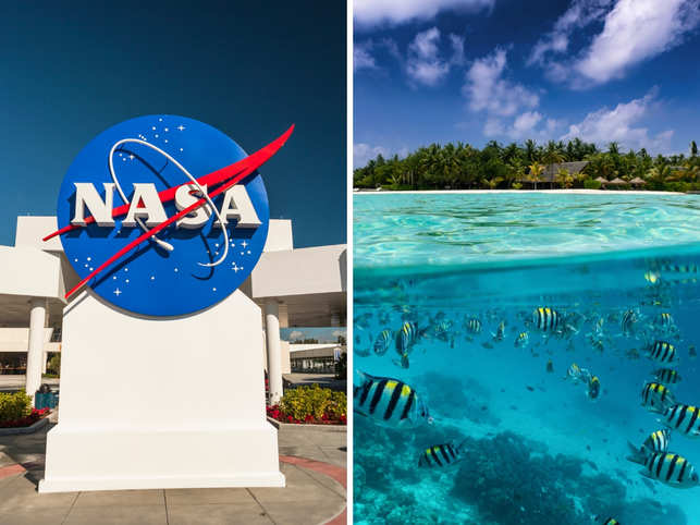 NASA is hopeful it can draw a relationship between lockdown efficacy and the spread of the virus.