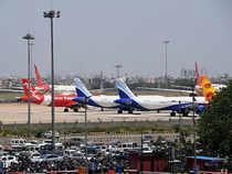 domestic airline
