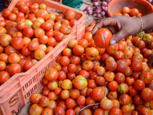 tomato bccl