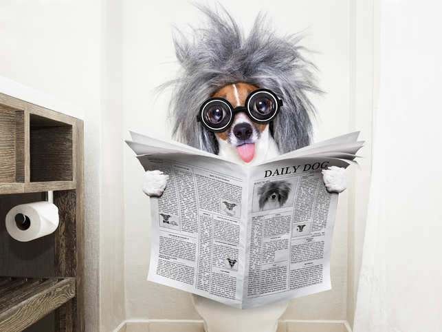 toilet-smart_iStock