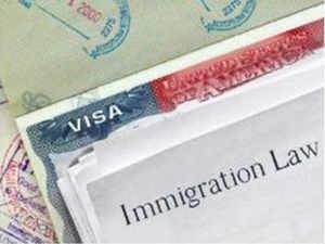 Trump suspends  H-1B visas, green cards till year-end