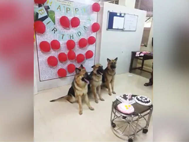 Mumbai Police celebrated their birthday, complete with cake, balloons and picture-perfect moments.