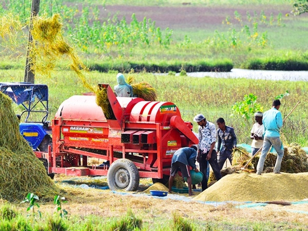 Rural economy will be India's lifeline in this epic crisis. After many years, farmers are smiling.