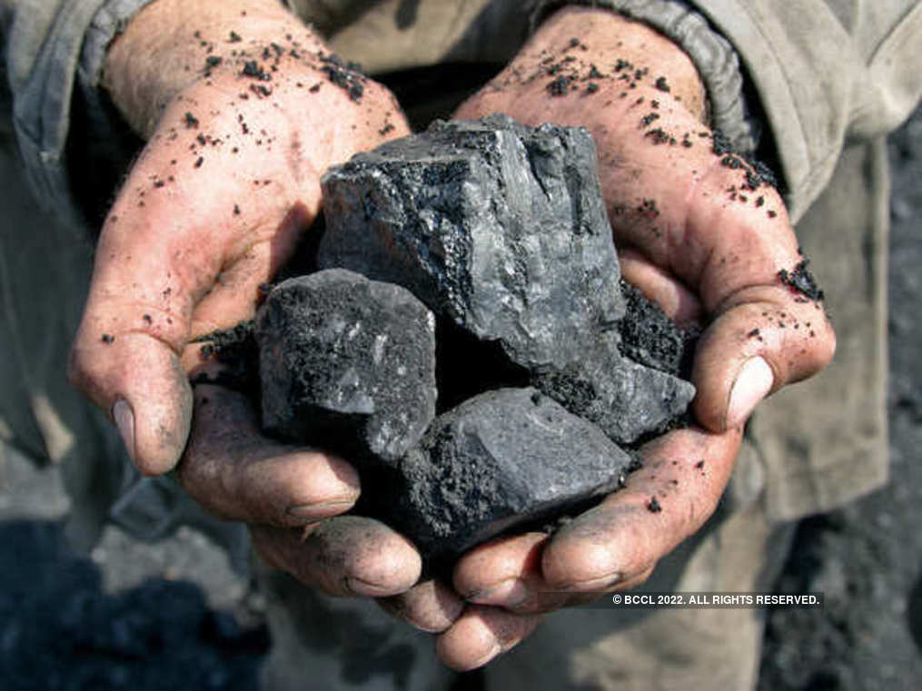 View: India should focus on 'higher value' clean technology than 'menial' coal