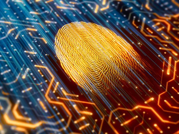 Mousetrapping the black hats: why password-less authentication is the future of data protection
