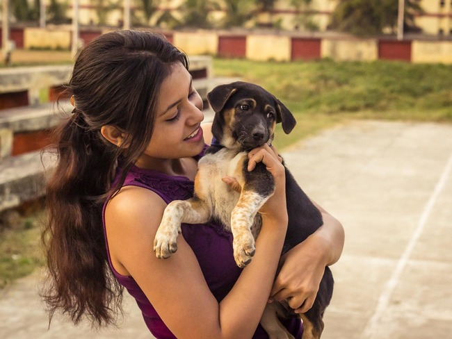 stray dogs: Cute, furry pooches come to the rescue of Indians feeling  lockdown blues, more people adopt strays - The Economic Times