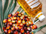 Palm oil rises tracking rivals, demand concerns loom